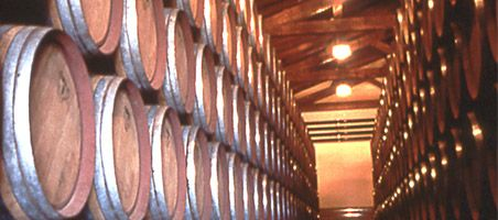Our Wineries DOP Jumilla